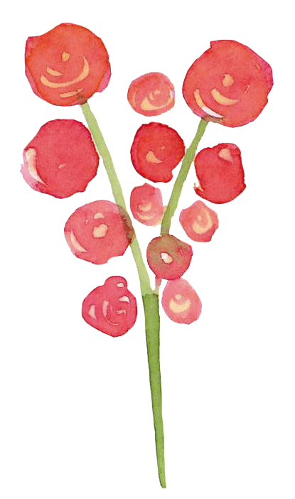 Illustration Blüten